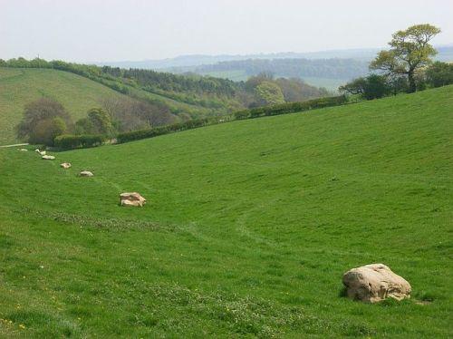 Downland_near_Rockley_-_geograph.org.uk_-_408862