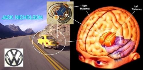 shining brain beetle vw