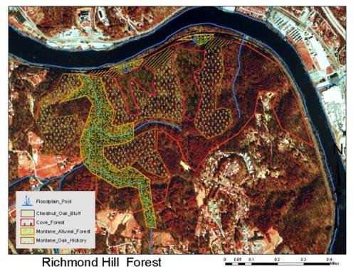 richmond-hill-communities