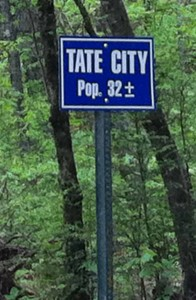 Tate-City-Pop-32-196x300